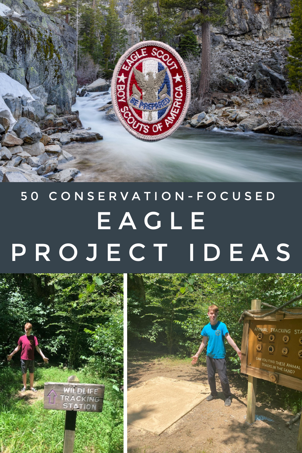 50 conservation-focused Eagle project ideas